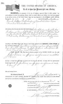 Lowes Patent