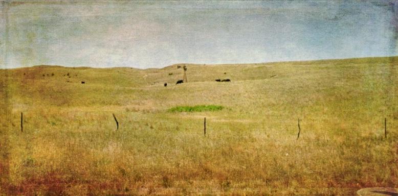 land edit