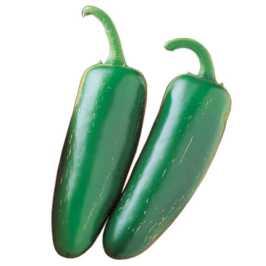 Mucho Nacho photo via Totally Tomatoes